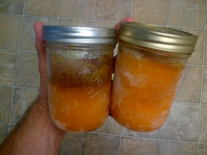 persimmon or pumpkin puree